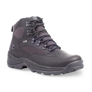 Timberland Men's Chocorua Trail Hiker Boot